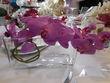 Orchidée fuchsia artificielle SIA Luxe + vase  - Occasion du Mariage