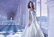 Robe de mariée DEMETRIOS collection 2014 splendide - Occasion du Mariage