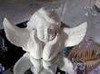 2 anges blancs buste  faience ailes ouvertes H17 cm  - Occasion du Mariage