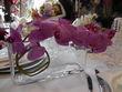 Orchidée fuchsia artificielle SIA Luxe + vase  - Val de Marne