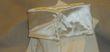 Gants long ivoire  - Occasion du Mariage