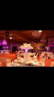Housses de chaises - Occasion du Mariage
