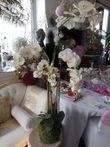 Orchidées sur mousse artificielle LUXE - Occasion du Mariage