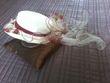 chapeau + mitaines ivoire et bordeaux - Occasion du Mariage