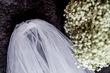 Voile court  - Occasion du Mariage