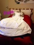 Robe de mariée blanche guipure - Occasion du Mariage