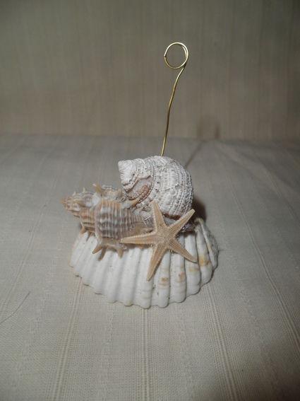 Marque-places coquillages pour un mariage pas cher thème marin 2012 - Occasion du mariage