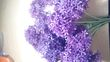 fleurs atificielles - Occasion du Mariage