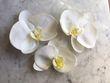 Orchidées plastique  - Occasion du Mariage