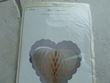 Coeur papier ivoire - Occasion du Mariage