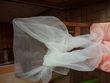étole couleur écrue en organdi - Occasion du Mariage