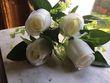 Fleurs en plastique  - Occasion du Mariage