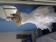 Robe de mariée  courte taille 36/38 - Occasion du Mariage