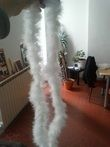 Boas plumes banches - Occasion du Mariage
