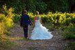 Magnifique robe de mariée Pronovias - Model Sisina - Occasion du Mariage