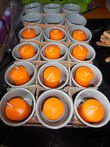 Lot 18 photophores gris clair neuf +12 bougies oranges. - Val de Marne