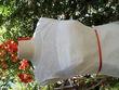 Robe de mariée Calendula - Occasion du Mariage