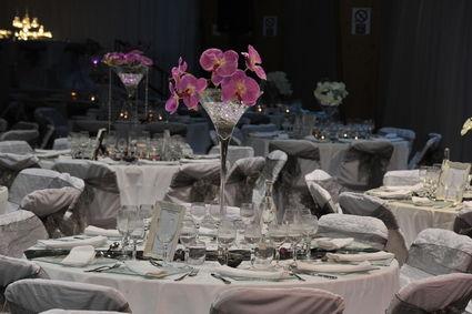 Location de décoration et Organisation de mariage en 2012 - Occasion du Mariage