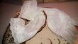 Loue voile de mariée cathédrale   - Bouches du Rhône