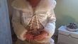 Robe de mariée, Capeline et jupon - Occasion du Mariage