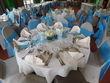6 noeuds de chaise bleu turquoise - Occasion du Mariage