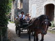 Mariage en calèche - Voyage de noces en roulotte - Occasion du Mariage