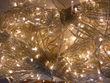 Guirlande de lumières 100m - Occasion du Mariage