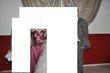 robe de soiré - Occasion du Mariage