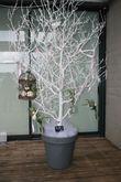 arbres decoratifs avec leds - Occasion du Mariage